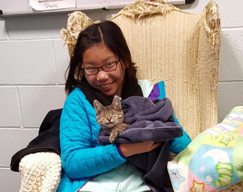 Blind Kitten Rae Gets Adopted!