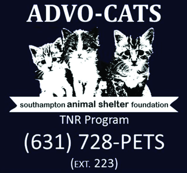 Sponsor a Spay/Neuter Day for Ferals
