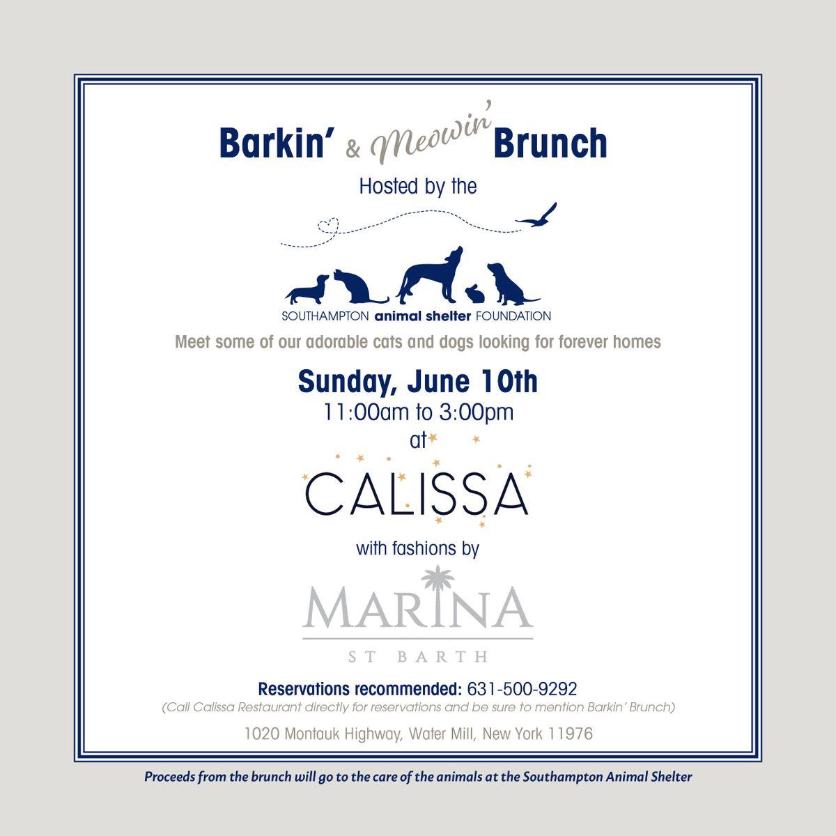 Barkin' Brunch at Calissa