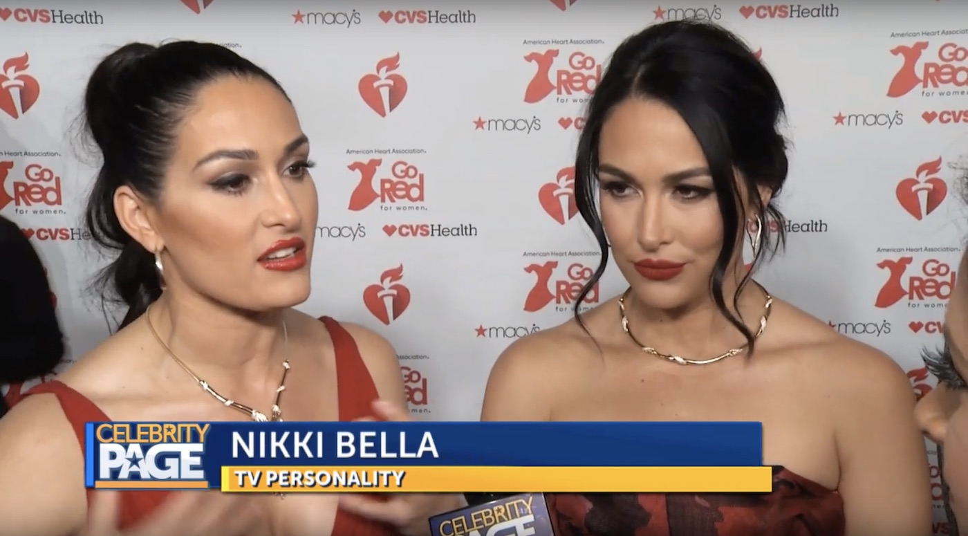 The American Heart Association's Red Dress Fashion Show with the Bella Twins